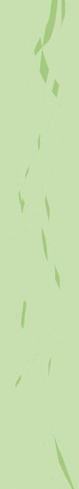 Valdres Energi designelement grønn